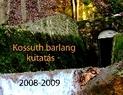 Kossut kutatás 2008 2009